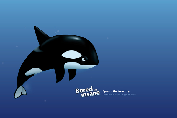 badass killer whale desktop background