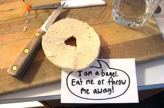 I am a bagel. Eat me or throw me away!